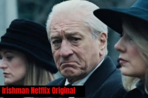 https://bestnetflixshows.com/review-of-netflix-original-movie-the-irishman-2019/